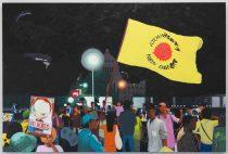 2012年8月17日、国会前「ATOMKRAFT? NEIN DANKE」(原子力?おことわり)