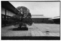 néo japonisme #80, 1996-2019